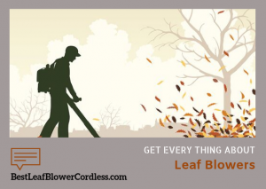 Everything You Need To Know About Leaf Blowers